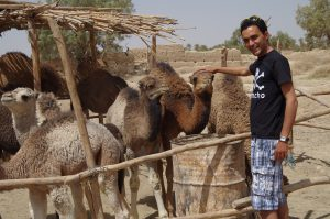 Imad with camels
