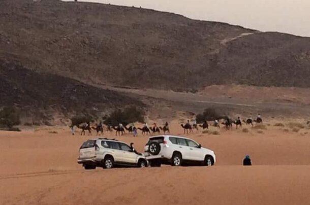 Camel trek and cars